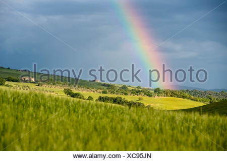 Italy, Tuscany, Siena District, Orcia Valley - rainbow after the storm - Stock Photo