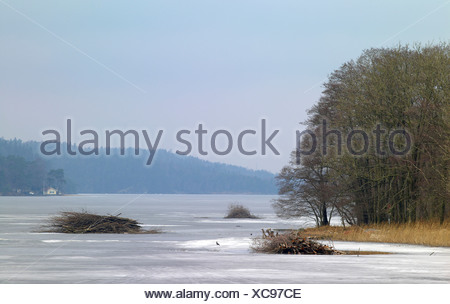 Scenic shot of trees by peaceful frozen lake against the sky - Stock Photo