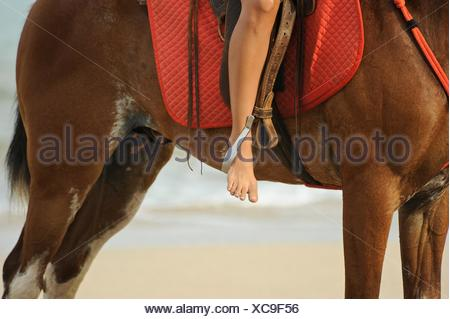 A barefoot woman riding a horse on a beach.. - Stock Photo