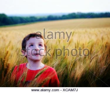 Boy Standing In Wheat Field And Looking Up - Stock Photo