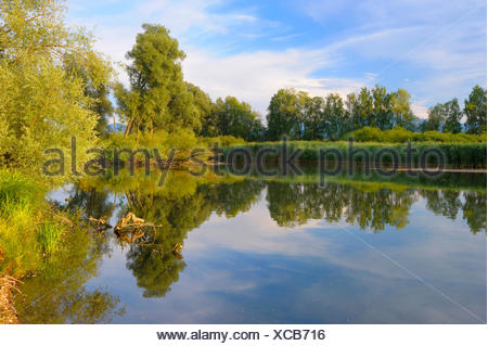 Muendung der Prien in den Chiemsee am Morgen, Deutschland, Bayern, Prien | mouth of the prien into the Chiemsee in the morning,  - Stock Photo