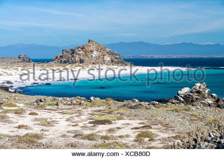 White sand beach and turquoise water at Damas Island near La Serena, Chile - Stock Photo