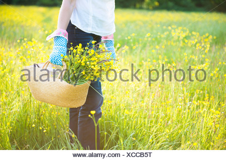 Cropped mid-section holding basket of flowers - Stock Photo