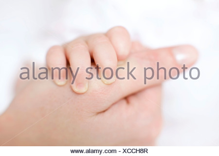 Mother and baby. Close-up of a 7 month old baby girl fingers holding to her mother's thumb. - Stock Photo