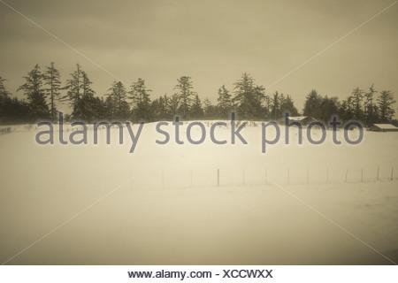 Rural scene in snow, Astoria, Oregon, USA - Stock Photo