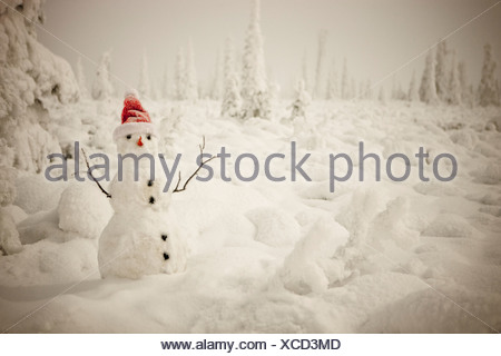 Snowman with red scarf and spruce forest, winter, wide angle from below, Anchorage, Alaska - Stock Photo