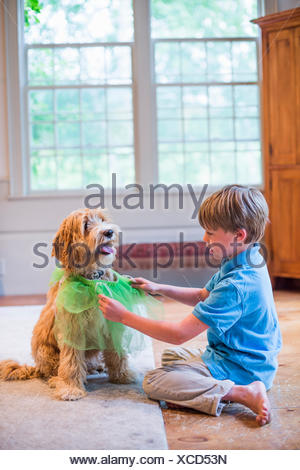 Young boy playing dress up with pet dog - Stock Photo