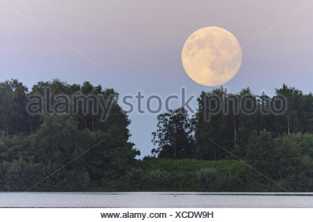 full moon over the dammer bergsee near damme (dümmer), vechta district, lower saxony, germany - Stock Photo