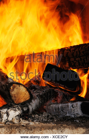 Wood fire, view of flames and charring logs - Stock Photo