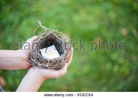 Child's hands holding bird nest containing drawing of sun - Stock Photo