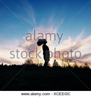 Silhouette of Wild Hair. Girl's hair flying, outlined by exquisite sunset - Stock Photo