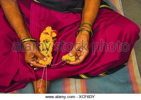 Woman devotee, wearing 9 yard saree making yellow flowers garland for the ceremonial puja of the deity. Patit Pavan Sri Ram Mandir, Belgavi, Karnataka - Stock Photo