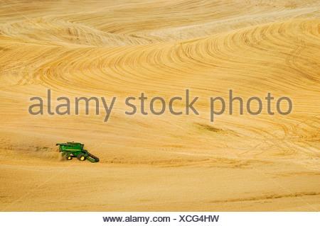 Agriculture - A John Deere combine harvests wheat on rolling hillside terrain / Palouse Region, near Pullman, Washington, USA. - Stock Photo
