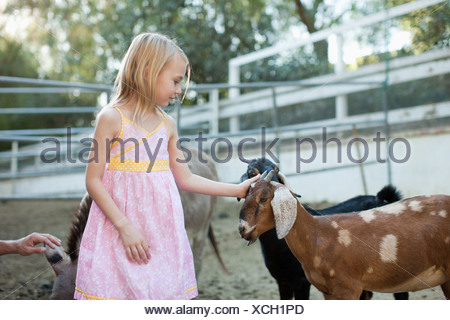 Girl petting goat - Stock Photo