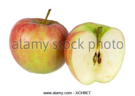 apple isolated - Stock Photo