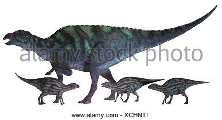 Maiasaura Dinosaur with Babies - Stock Photo