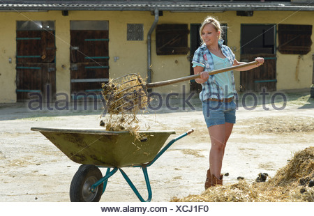 Young female farmer, pitchfork, horse manure, cleaning out, push cart, wheelbarrow, Gingen, Baden-Wuerttemberg, Germany, Europe - Stock Photo