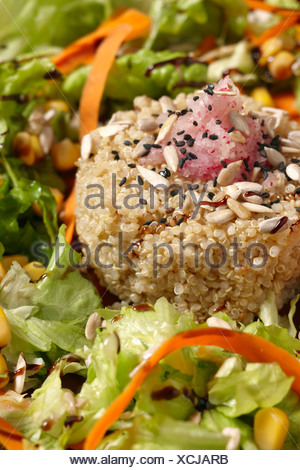 Ensalada crujiente de quinoa, Cerveceria Enarak, Pamplona Iruñea, Navarra Nafarroa, Spain España - Stock Photo