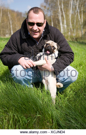 Portrait of a man and a pug in a meadow - Stock Photo