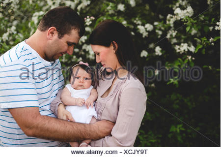 Portrait of baby girl carried between mother and father by garden apple blossom - Stock Photo