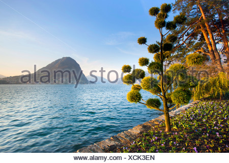 Lago di Lugano, Switzerland, Europe, canton, Ticino, lake, shore, park, trees, spring - Stock Photo