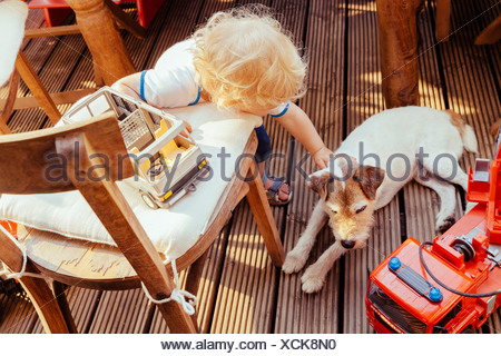 Little boy playing with Jack Russel terrier  and vehicle toys, elevated view - Stock Photo