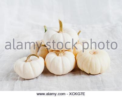 Small white pumpkins - Stock Photo
