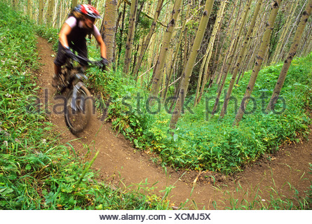 Mountain biker rides down the Gun Creek Trail from Spruce Lake, Southern Chilcotin Mountains, British Columbia, Canada. - Stock Photo