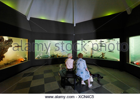 Aquarium, Bad Wiessee, Upper Bavaria Germany - Stock Photo
