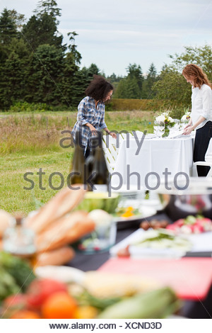 Woman preparing table for dinner party on farm - Stock Photo
