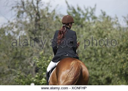 Reiterin auf Deutschem Sportpferd / riding woman - Stock Photo