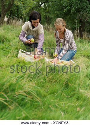 Woman and girl putting apples in boxes - Stock Photo