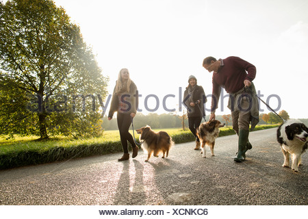 Senior couple and granddaughter with dogs, Norfolk, UK - Stock Photo
