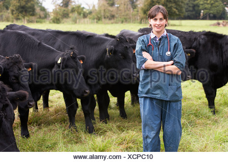 Portrait Of Vet In Field With Cattle - Stock Photo