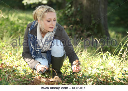 A woman mushroom picking. - Stock Photo