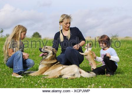 family with dogs - Stock Photo