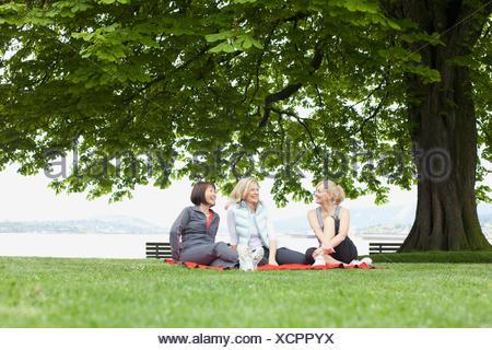 women relaxing on blanket in the park - Stock Photo