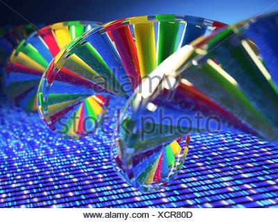 DNA (deoxyribonucleic acid) strand, illustration. - Stock Photo