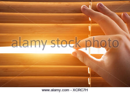Looking through window blinds, sun light coming inside. - Stock Photo