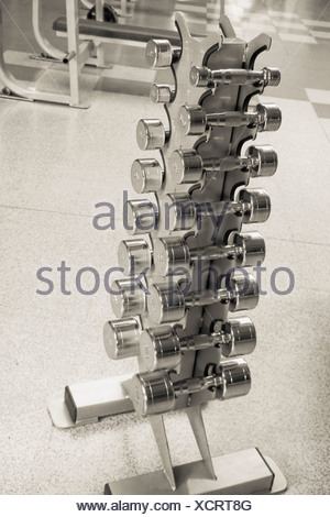 Dumbbells on a rack in a gym - Stock Photo