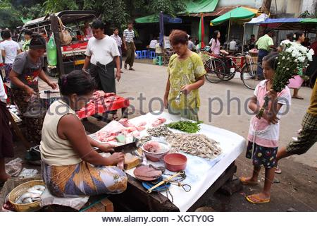 Burma women Selling Fish at Local Market, yangon, myanmar - Stock Photo