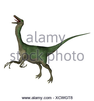 The Gallimimus seemed also chickens to imitators mentioned with a length from more than 6 meters it in the Cretaceous period - Stock Photo