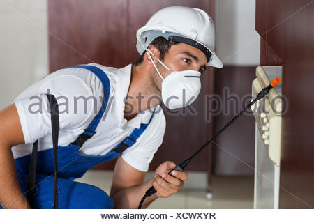 Pest worker using sprayer on cabinets in kitchen - Stock Photo