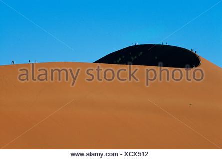 Sand dune 49, Sossusvlei, Namib-Naukluft National Park, Namibia, Africa - Stock Photo