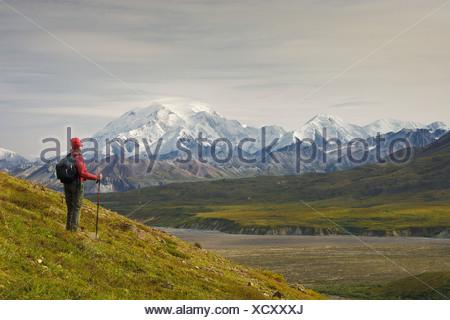 Female hiker views Mt. McKinley in Denali National Park, near Eielson Visitors Center, Alaska, Fall - Stock Photo
