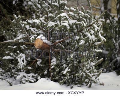 Christmas End - Stock Photo