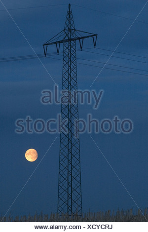 electricity pole in front of evening sky, Germany, Lower Saxony - Stock Photo