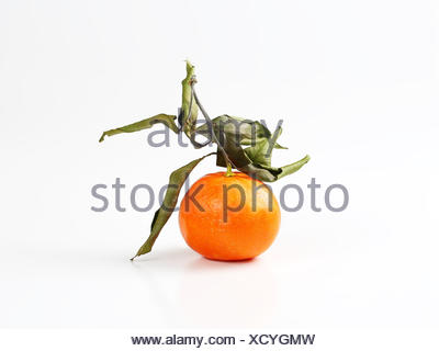 clementine fruit with leaves - Stock Photo