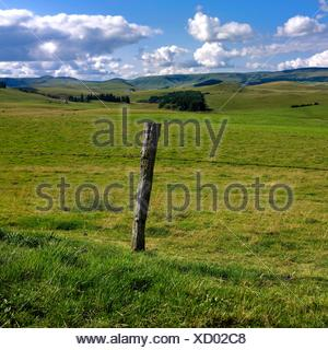 Rolling hills in Cezallier, Auvergne, France, Europe - Stock Photo