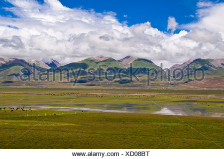 Wide open landscape of Tibet along the railway line from Lhasa to Chengdu, Tibet, Asia - Stock Photo